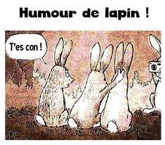 Lapins crétins https://www.15heures.com/photos/p/33561/