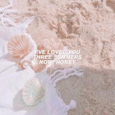 you're my LOVER Taylor Lyrics, Taylor Swift Quotes, Song Lyrics, Long Live Taylor Swift, Taylor Alison Swift, Jandy Nelson, Lyric Quotes, Quotes Quotes, Aesthetic Words