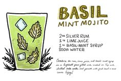 The Basil-Mint Mojito  2 oz Silver Rum  1 oz Lime Juice  1 oz Basil-Mint Syrup  Soda Water  To make the basil-mint syrup: combine a cup of fresh basil leaves and a cup of fresh mint leaves. Blanch them in boiling water for 15 seconds, then use a slotted spoon to transfer the leaves to a bowl of ice water to cool. Combine a cup of water and a cup of white sugar in a saucepan and heat gently, stirring frequently, until the sugar is melted. Combine the leaves and simple syrup in a blender and…