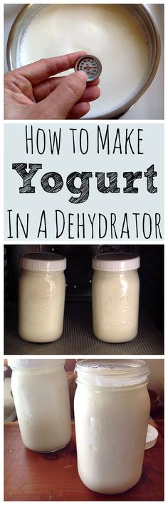 Homemade yogurt is super tasty and easy to make in a dehydrator!