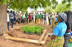 The Ghana Federation of Forest and Farm Producers [GhaFFaP] has stated it will plant 3million trees to help government achieve the objectives of the 'Green Ghana Day' initiative. The federation joined the rest of the country to mark the day, by collaborating with the Catholic community at Yarigabisi in the... The post Green Ghana Day: GhaFFaP aims to plant 3 million trees to support government's cause appeared first on Clickongh. Capacity Building, Ecology, Ghana, Trees To Plant, Farmer, Catholic, Rest, Entertainment, Community