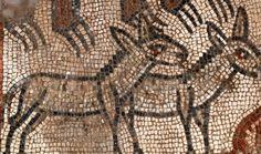 mosaicos sobre el Arca de Noé, en una antigua sinagoga, Un par de burros