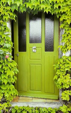 Beautiful Chartreuse green door with matching Ivy in Bergères, Aube, France.