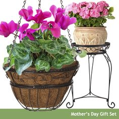 As the weather gets cooler, the time to bring plants inside gets closer. Display your indoor plants beautifully with the 14 Inch Hanging Basket & 21 Inch Plant Stand Gift Set!