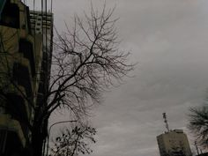 Buenos Aires. Gris