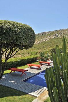 Swimming pool in the vegetation