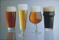 Siete degli intenditori di #birre? No? Fatevi una #cultura allora leggendo questa pagina web!