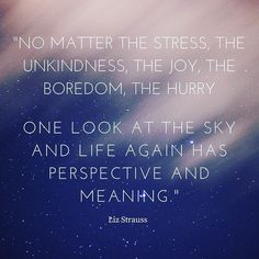 No matter the stress the unkindness the joy the boredom the hurry  one look at the sky and life again has perspective and meaning. - Liz Strauss  #Quote #MotivationalMonday #MondayMotivation