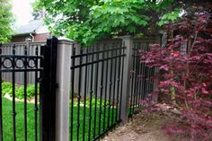 Trex with Iron 2 Fence Prices, Composite Fencing, Steel Fence, Wrought Iron, Fences, Home Improvement, Deck, Picket Fences, Iron Fences