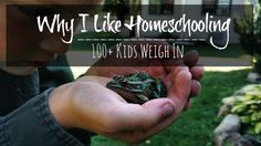 The Unlikely Homeschool: Why I Like Homeschooling: 100+ Kids Weigh In