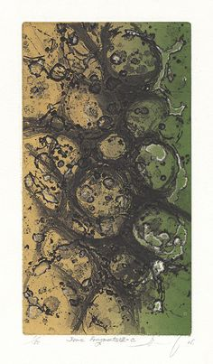 Some Fragments VIII-C. By Takamune Ishiguro. Etching and aquatint, 2005. Edition 50.