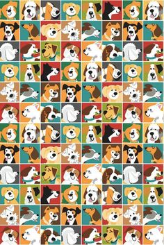 Dog Park Multi E-2932 86  This listing is for 1 Yard Cut of Studio e Fabrics.  Fashion & quilting weight fabric, 43/44 wide, 100% cotton. Cut from