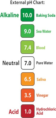 Key to Alkalinity pH Chart, the body needs to be alkaline in order to be healthy and majority depends on foods you eat and lots of water Health Facts, Health And Nutrition, Health Tips, Health And Wellness, Health Fitness, Acidic Vs Alkaline Foods, Acid And Alkaline, Ph Chart, Diet Chart