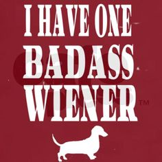 Actually.... i have 2 bad ass winers :) ❤❤❤ my Dachshunds