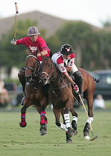 who is up for a little polo match? anyone?  #greatbritain #TrollbeadsWorldTour