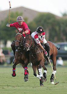Polo.. This is the kind of Sport I love playing !! Ho ho Boy !! hehehe...