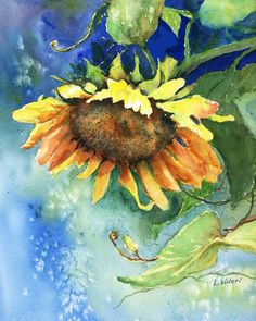 Title Droopy Sunflower A giclee print from my original watercolor painting of a large sunflower with lots of rich color. Measures Comes complete with a white mat backing board and clear bag for protection. Actual print size is 8 12 x 11 Watercolor Sunflower, Sunflower Art, Watercolor Print, Watercolour Painting, Watercolor Flowers, Arte Sketchbook, Painter Artist, Pictures To Paint, Gouache