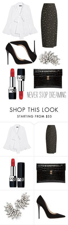 """""""Back To Black (And White)."""" by konstantinaaabour ❤ liked on Polyvore featuring E L L E R Y, Brock Collection, Christian Dior, Alexander McQueen, Yves Saint Laurent and Jimmy Choo"""