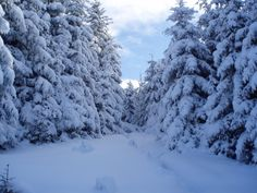 My backyard Romania, 3, Places Ive Been, Backyard, Snow, Photography, Outdoor, Outdoors, Patio