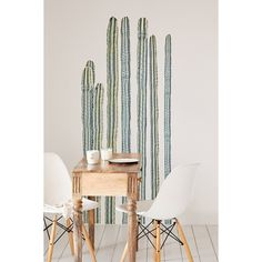 Walls Need Love Desert Cacti Wall Decal Set (110 AUD) ❤ liked on Polyvore featuring home, home decor, green and green home decor