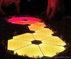 11 Best Nano Leaf Designs Images Leaf Design Light