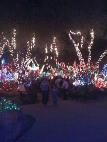 The holiday lights at Ethel M. Chocolate's Cactus Garden #Vegas