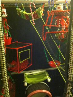 Lulu and Echo's Christmas set by Glider Girls Toy Shop Sugar Glider Baby, Sugar Gliders, Diy Rat Toys, Rat Cage Accessories, Parrot Toys, Parrot Cages, Sugar Bears, Pet Cage, Pet Clothes
