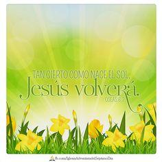 Conozcamos al Señor; vayamos tras su conocimiento. Oseas 6:3