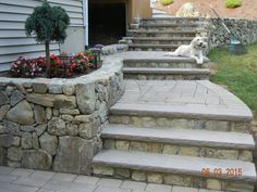 natural stone with brownstone treads Koi, Natural Stones, Landscapes, Sidewalk, Backyard, Outdoor Decor, Nature, Courtyards, Paisajes
