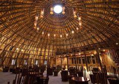 Il bambù: la meraviglia dell'acciaio verde | Campesato | Serramenti in Legno e Legno/Alluminio | Padova