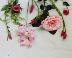 Ruffles & feathers #vscoflowers #theflowerseekerslove  #flowers #floralfix #flowersofinstagram #bloomsofinstagram #floral #pretty #thatsdarling #allthingsbotanical #flowerslovers #flowermagic #florist #blooms #floweroftheday #calledtobecreative #mybeautifulmess #livecreatively #flashesofdelight #photosinbetween #lovelysquares #pursuepretty #pink #roses #warringah #northernbeaches #northernbeacheslocal