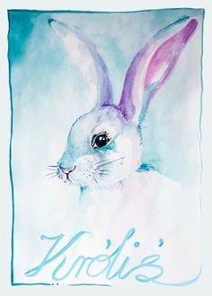 momzoom: Plakat króliś