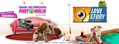 """Participer à notre concours """"Love Story des animaux""""  sur http://www.zoomalia.com/photomalia/jeu/49 #concours #photo #animaux #zoomalia"""