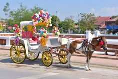 Horse Carriage in Lampang, Thailand puzzle in Animals jigsaw puzzles on TheJigsawPuzzles.com. Play full screen, enjoy Puzzle of the Day and thousands more.