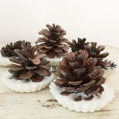 Fireplace lighters make yourself- Kamin Anzünder selbermachen Dear Ones, for all of you who are fortunate enough to have a fireplace at home, I have a wonderful DIY for you! We have these pinecone firelighters for Christmas away. Diy Jewelry Unique, Diy Jewelry To Sell, Diy Jewelry Holder, Diy Jewelry Making, Diy Projects To Sell, Diy Wood Projects, Diy Crafts To Sell, Easy Crafts, Easy Diy