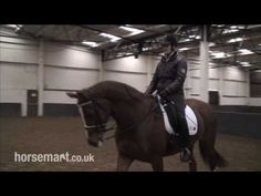 differences in collected walk, medium walk, extended walk and free walk in dressage