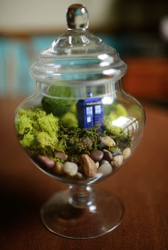 That settles it! I've been wanting to make a terrarium for some time. Now, I see this DIY Doctor Who Terrarium Dr Who, Decor Terrarium, Terrarium Ideas, Fairy Terrarium, Small Terrarium, Moss Terrarium, Deco Originale, Paludarium, Ideias Diy