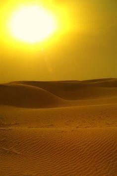 Thar #Desert, a few minutes before sunset