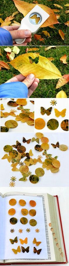 Paper Punching Autumn Leaves diy craft crafts easy crafts diy crafts autumn crafts fall crafts crafts for kids Autumn Crafts, Nature Crafts, Diy For Kids, Crafts For Kids, Diy And Crafts, Arts And Crafts, Wedding Send Off, Craft Punches, Arte Floral
