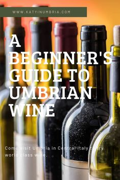 Umbria has some amazing wines. This is a beginner's guide to enjoy the wine of Umbria, Italy while on vacation. Including the red Sagrantino from Montefalco and Orveito's white wine. Italy Destinations, Famous Wines, Different Wines, Wine Guide, Italy Holidays, Italy Travel Tips, Italian Wine, Foodie Travel, Wine Tasting