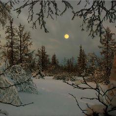 kaamos. polar night. In Utsjoki, Finland the sunset was 25.11.2012 12:18 am. Sun…