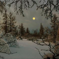 Full moon and snow.