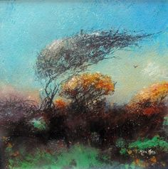 Wind and Gorse