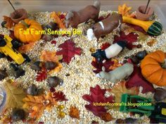We're really getting excited about fall here, which inspired me to put together this new sensory bin. For this bin the base was cracked. Farm Sensory Bin, Sensory Bins, Sensory Play, Fall Preschool, Preschool Ideas, Farm Fun, Farm Theme, Dee Dee, Autumn Theme