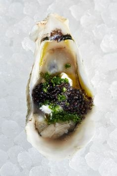 Huur de Oesterkoning in voor uw party www.nl Oysters - Looks like caviar and maybe a bit of feta cheese. Seafood Dishes, Fish And Seafood, Seafood Recipes, Cooking Recipes, Caviar Recipes, Oyster Recipes, Food Design, Food Plating, The Ordinary