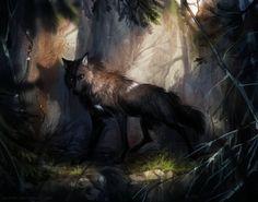 Kivikyy by Kipine.deviantart.com on @DeviantArt