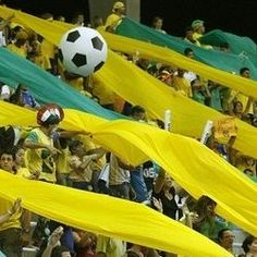 Irene- Marketing Manager: Attend the 2014 FIFA World Cup in Brazil