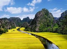 Breathless at the beauty of Ninh Binh in the harvest season.