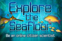 Explore the seafloor