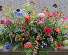 Casket Flowers, Memorial Day, Funeral, Spring Time, Flower Designs, Planting Flowers, Flower Arrangements, Beautiful Flowers, Berries